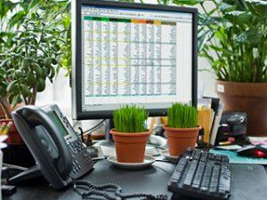 Plantas venenosas: Peligro en la oficina